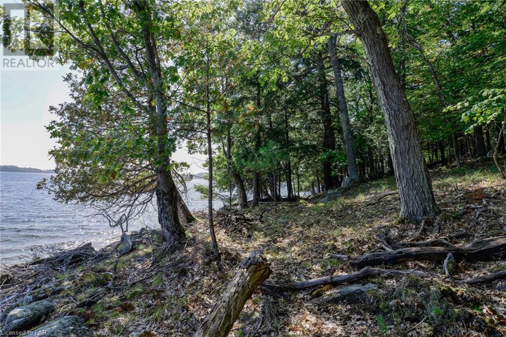 0 Highlands Island, Muskoka Lakes, Ontario  P0B 1P0 - Photo 19 - 40115999
