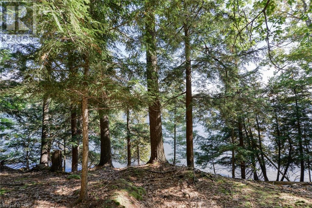 0 Highlands Island, Muskoka Lakes, Ontario  P0B 1P0 - Photo 20 - 40115999