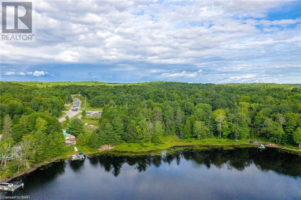 1010 Brackenrig Road, Port Carling, Ontario  P0B 1J0 - Photo 6 - 40149033