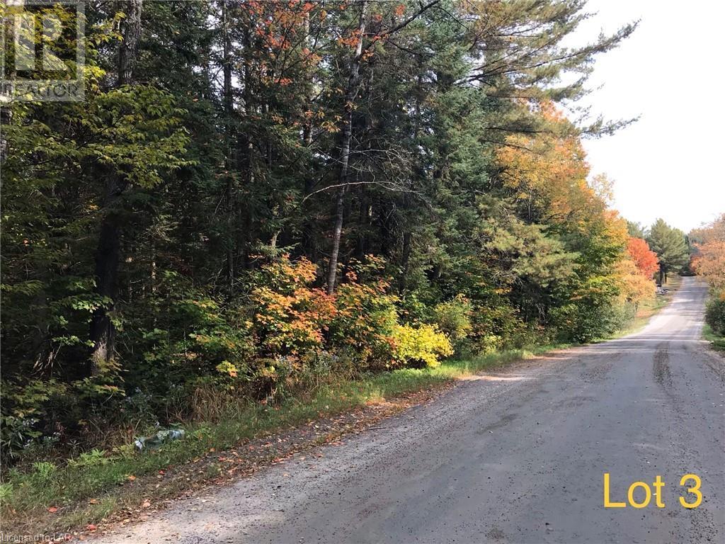 0 (Lot 3) Stephenson 2 Road W, Utterson, Ontario  P0B 1M0 - Photo 5 - 40164849