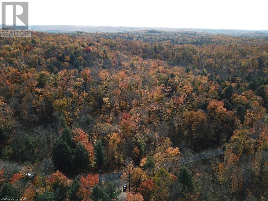 0 Harp Lake Road, Huntsville, Ontario  P1H 2J6 - Photo 15 - 40166489
