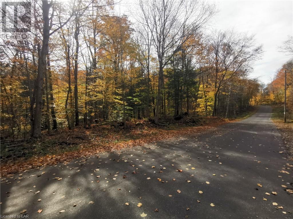 0 Harp Lake Road, Huntsville, Ontario  P1H 2J6 - Photo 4 - 40166489