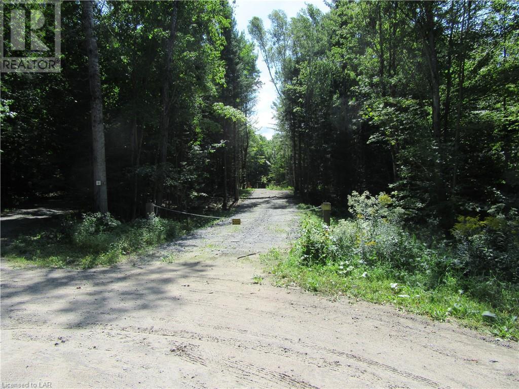 40 Henry Road, Bracebridge, Ontario  P1L 1X2 - Photo 10 - 40168370