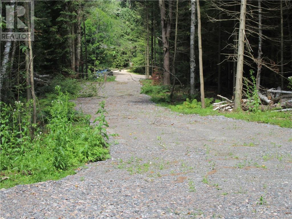 40 Henry Road, Bracebridge, Ontario  P1L 1X2 - Photo 13 - 40168370