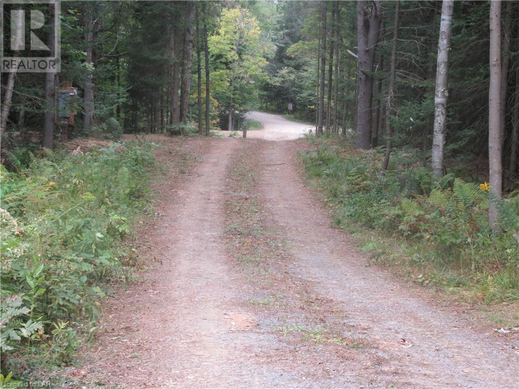 40 Henry Road, Bracebridge, Ontario  P1L 1X2 - Photo 5 - 40168370