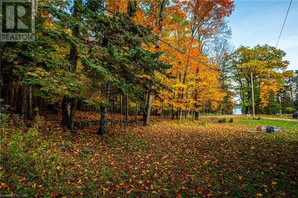 1011 Birchcroft Road, Dwight, Ontario  P0A 1H0 - Photo 33 - 40175854